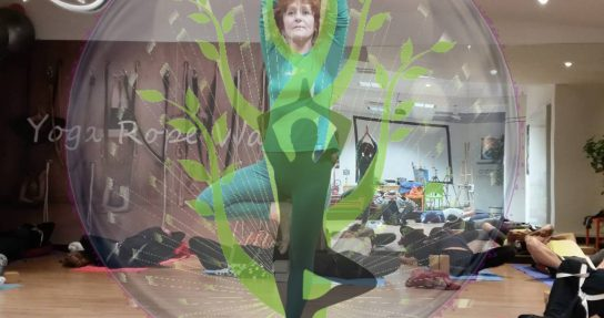 Link to YOGA SPECIAL CLASS